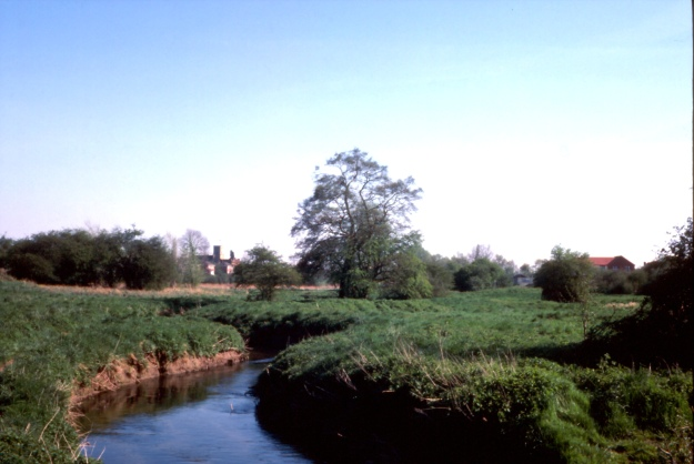 The River Brain near Dickie Meads, looking towards Chipping Hill, in 1988