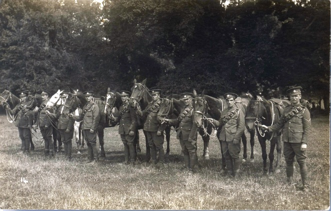 Soldiers from the Royal Engineers with horses on the Avenue fields. It is probably the Avenue at the back with its huge trees (M1889)