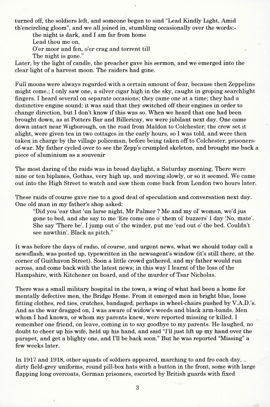 Mr Palmer - article about First World War in Witham, part 3 (above)